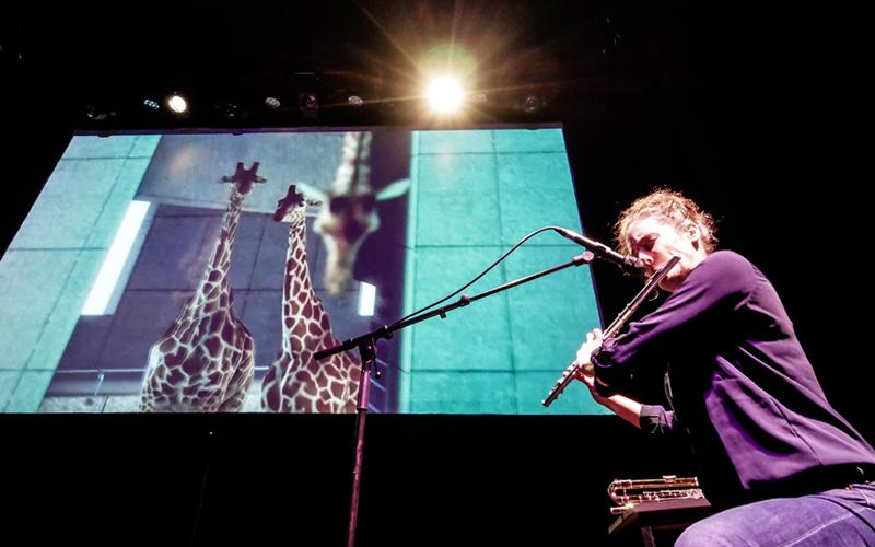 Ciné Beat-Box – Ludivine Issambourg et Nicolas Derand